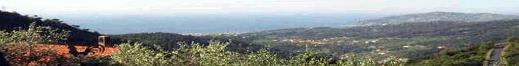 Vistamare Tovo - Herzlich willkommen in Ligurien